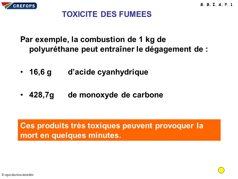 16,6 g d'acide cyanhydrique 428,7g de monoxyde de carbone