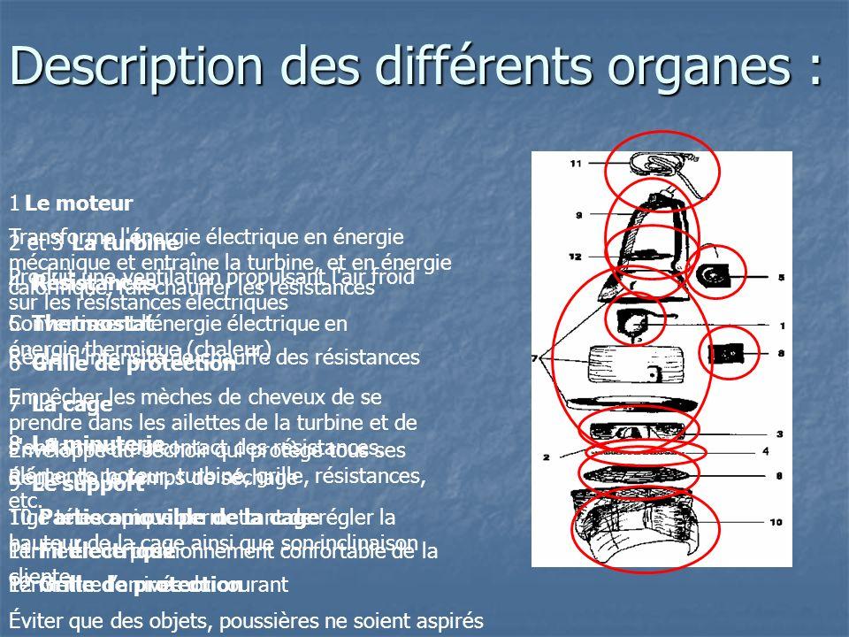 Description des différents organes :