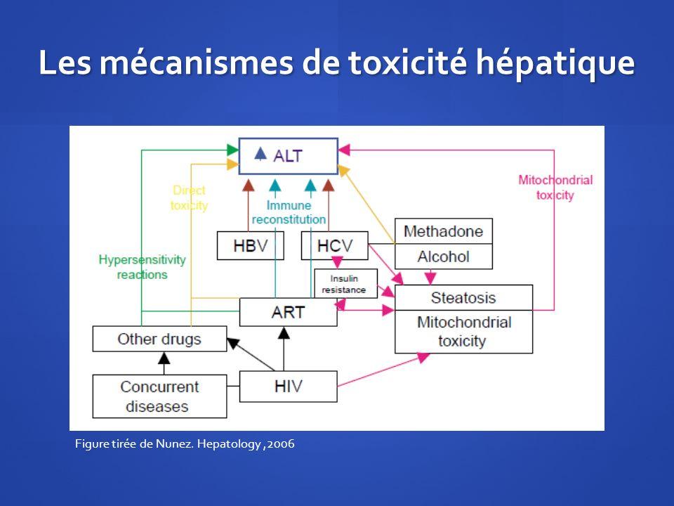 Les mécanismes de toxicité hépatique