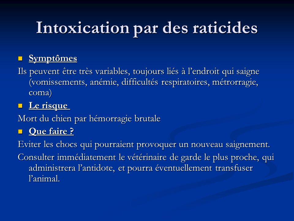 Intoxication par des raticides