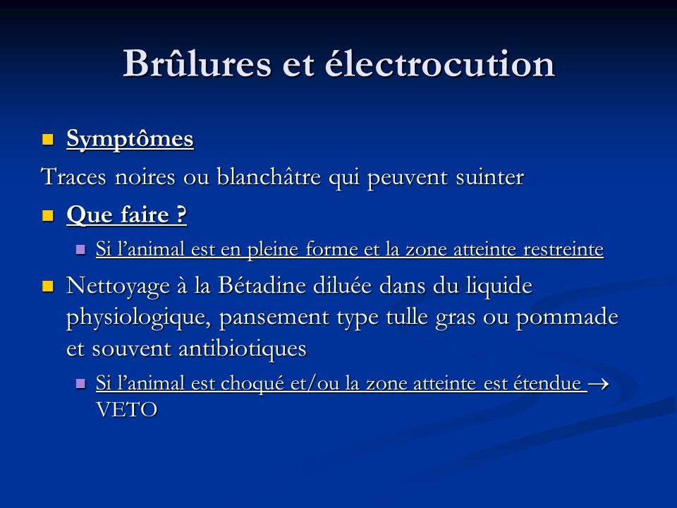 Brûlures et électrocution