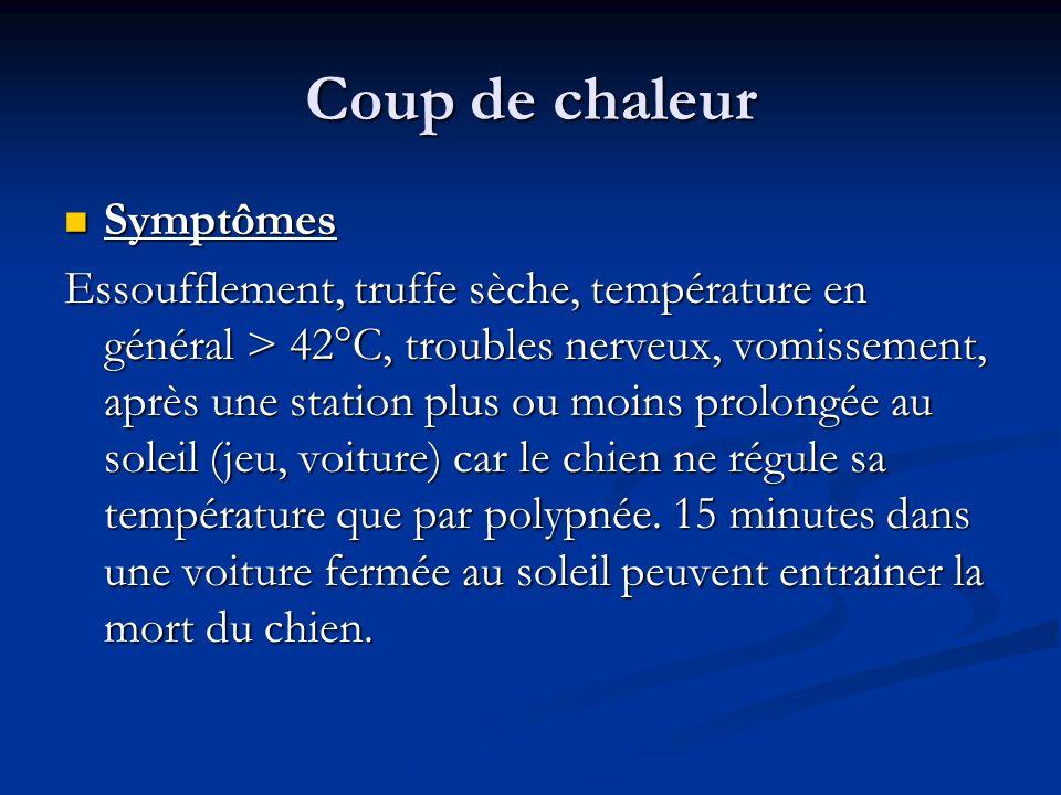 Coup de chaleur Symptômes