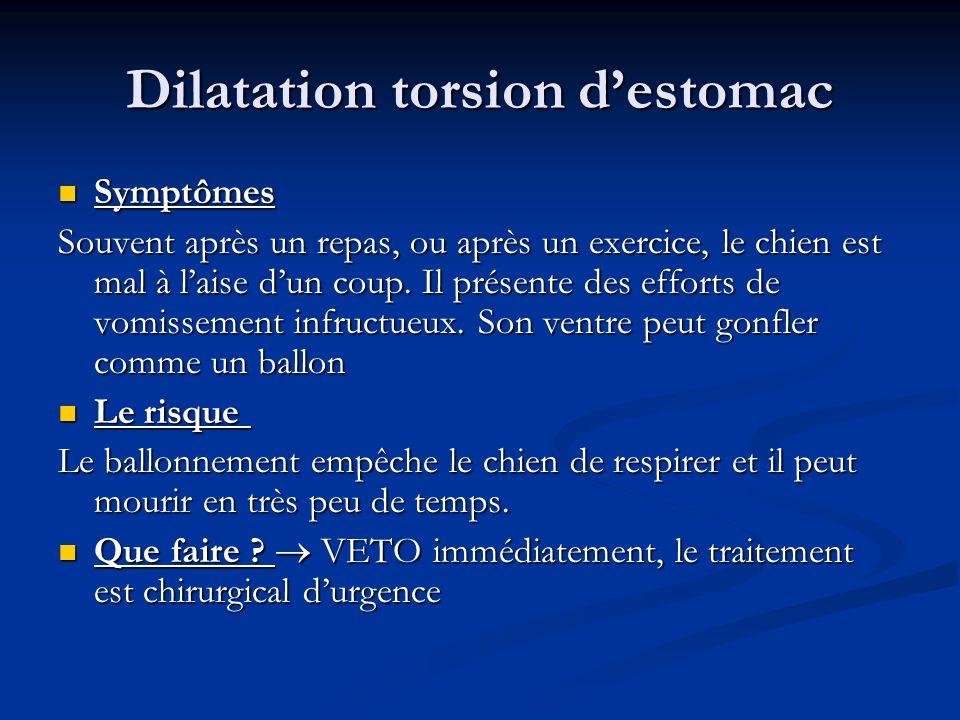 Dilatation torsion d'estomac