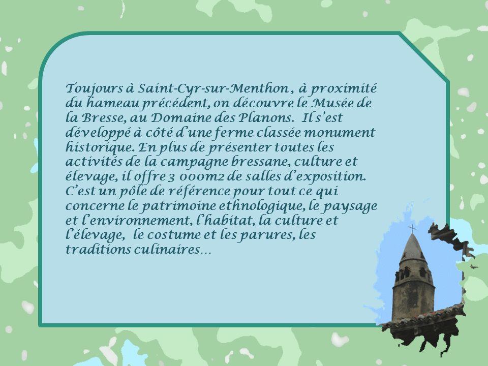 Toujours à Saint-Cyr-sur-Menthon , à proximité du hameau précédent, on découvre le Musée de la Bresse, au Domaine des Planons.