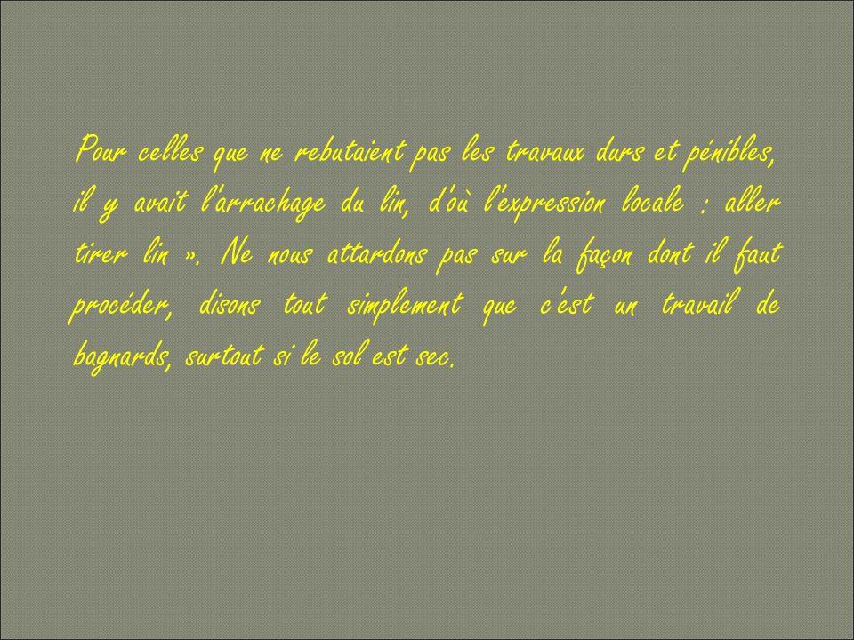 Pour celles que ne rebutaient pas les travaux durs et pénibles, il y avait l arrachage du lin, d où l expression locale : aller tirer lin ».