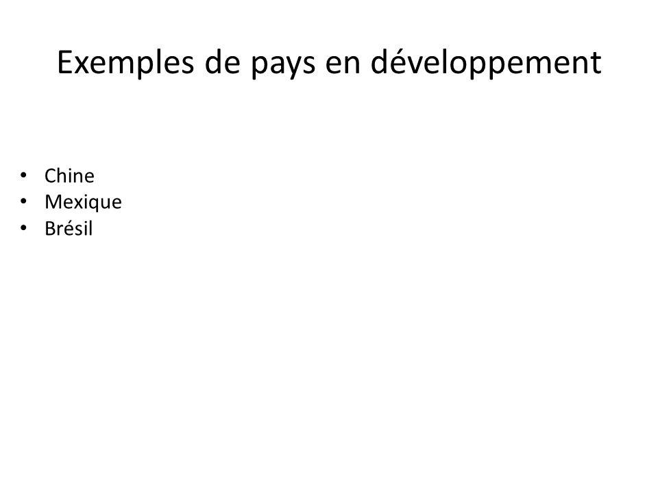 Exemples de pays en développement
