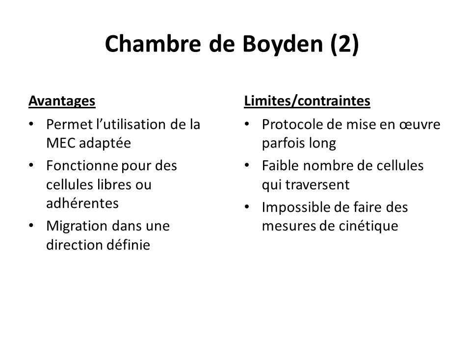 Chambre de Boyden (2) Avantages Limites/contraintes