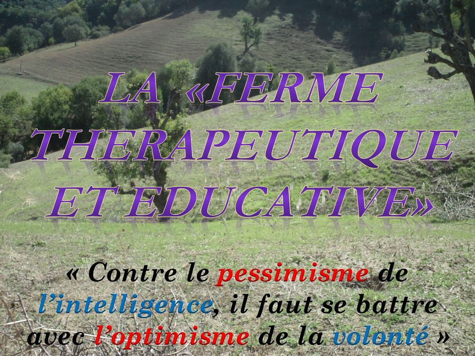 LA «FERME THERAPEUTIQUE ET EDUCATIVE»