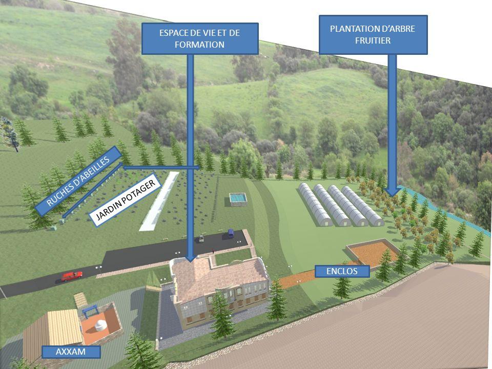 PLANTATION D'ARBRE FRUITIER ESPACE DE VIE ET DE FORMATION