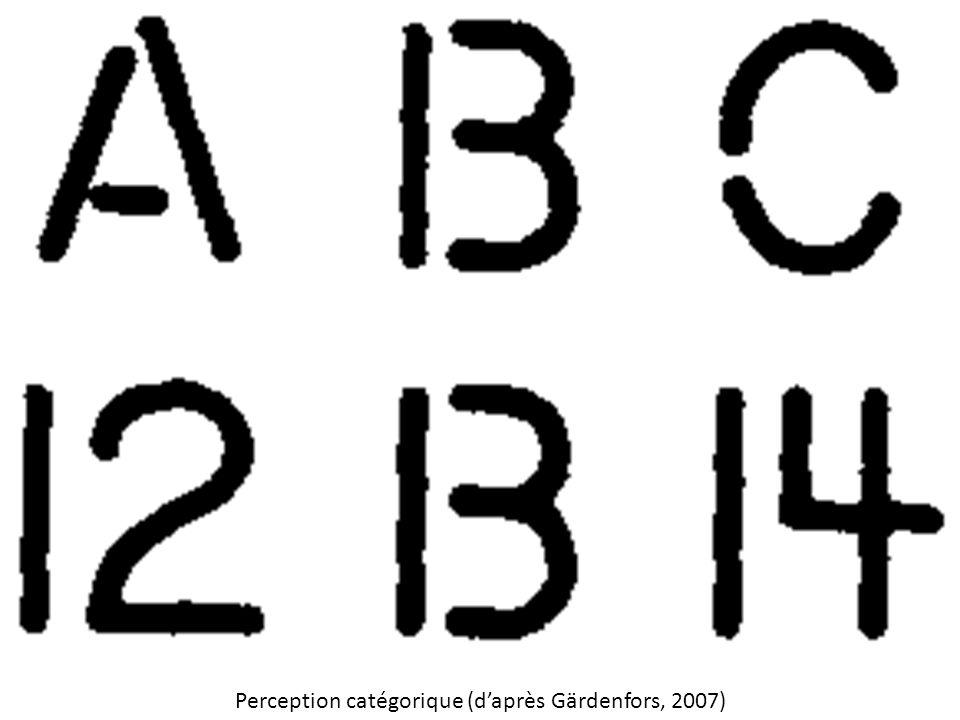 Perception catégorique (d'après Gärdenfors, 2007)