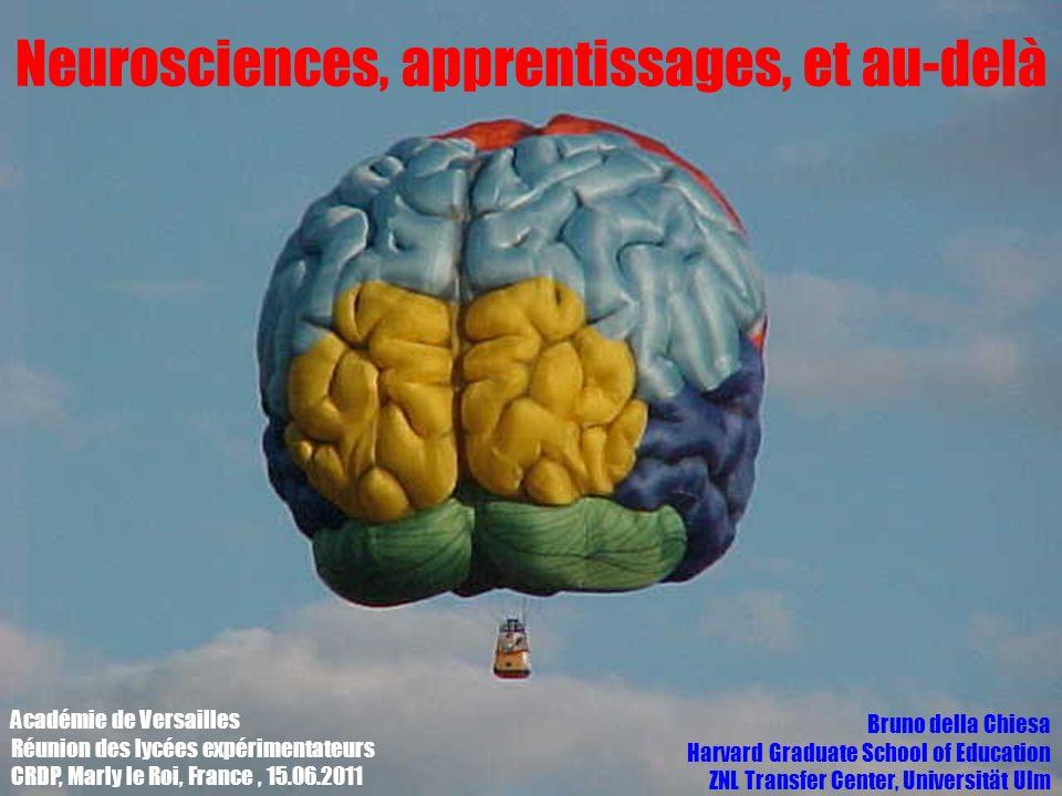 Neurosciences, apprentissages, et au-delà