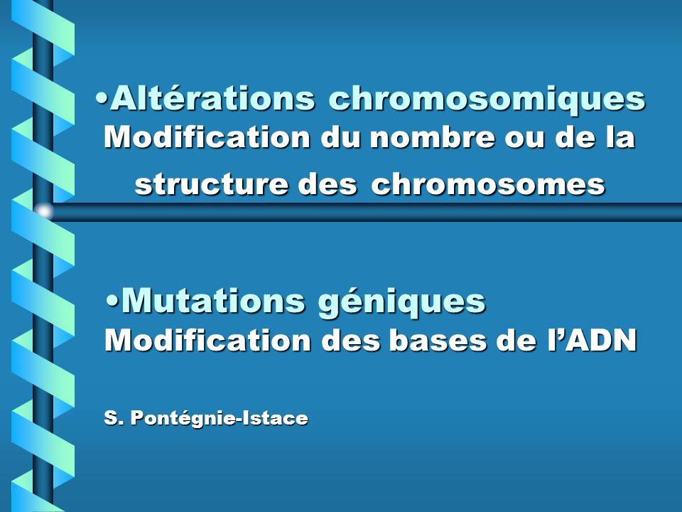 Mutations géniques Modification des bases de l'ADN S. Pontégnie-Istace