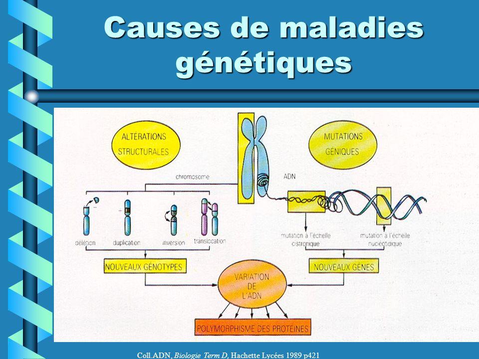 Causes de maladies génétiques
