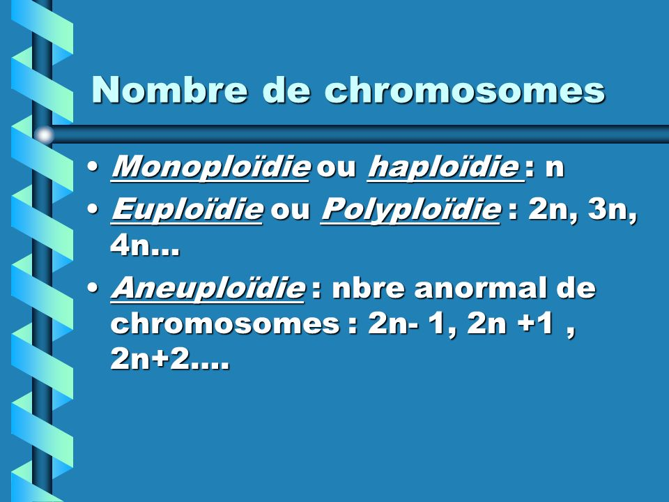 Nombre de chromosomes Monoploïdie ou haploïdie : n