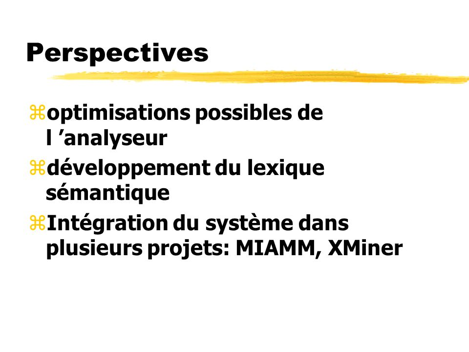 Perspectives optimisations possibles de l 'analyseur