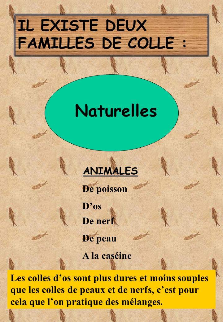 Naturelles IL EXISTE DEUX FAMILLES DE COLLE : ANIMALES De poisson D'os