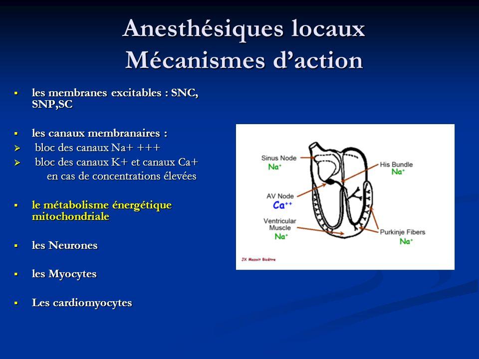 Anesthésiques locaux Mécanismes d'action
