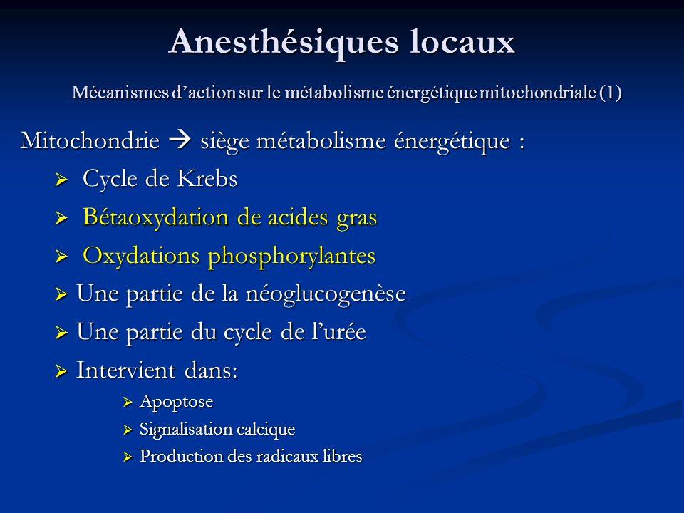 Anesthésiques locaux Mécanismes d'action sur le métabolisme énergétique mitochondriale (1)