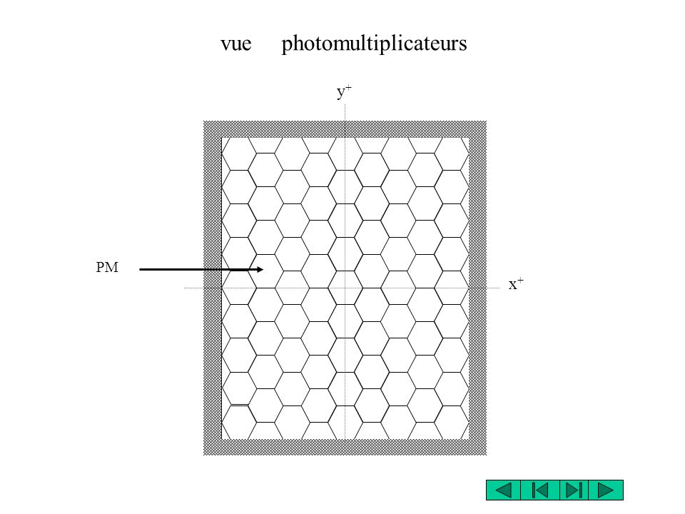 vue photomultiplicateurs