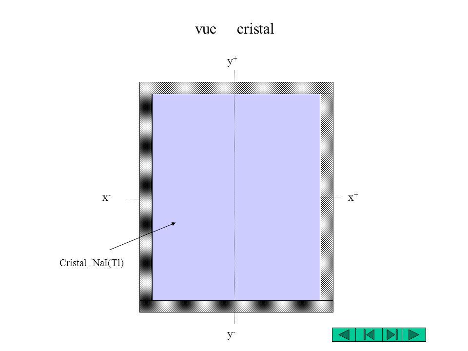 vue cristal y+ x- x+ Cristal NaI(Tl) y-