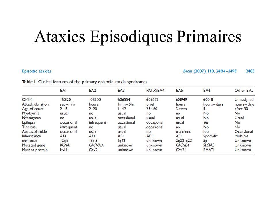 Ataxies Episodiques Primaires