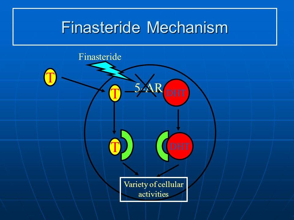 Finasteride Mechanism