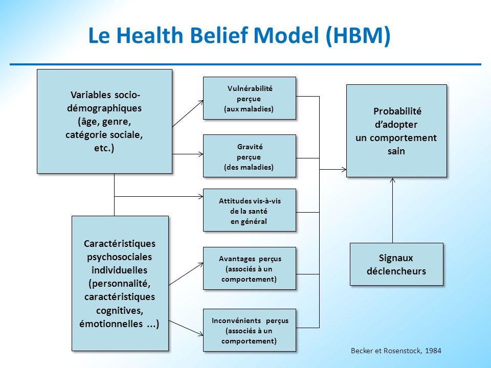 Le Health Belief Model (HBM)