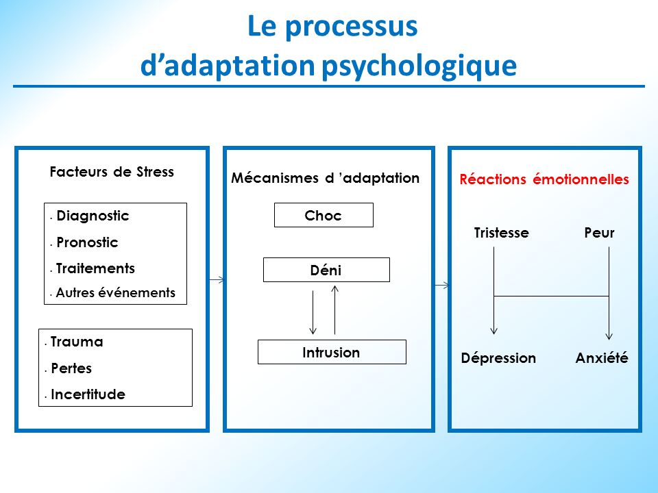 Le processus d'adaptation psychologique