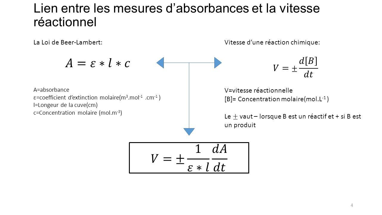 Lien entre les mesures d'absorbances et la vitesse réactionnel