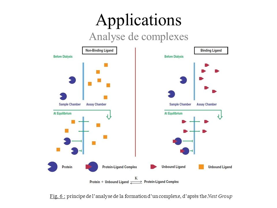 Applications Analyse de complexes