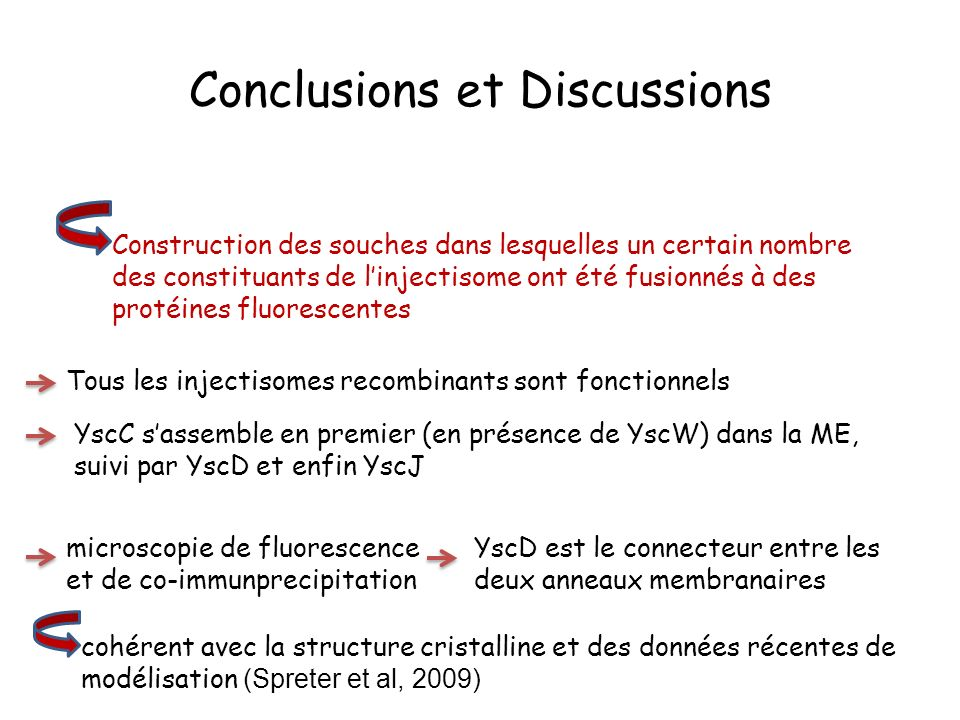 Conclusions et Discussions