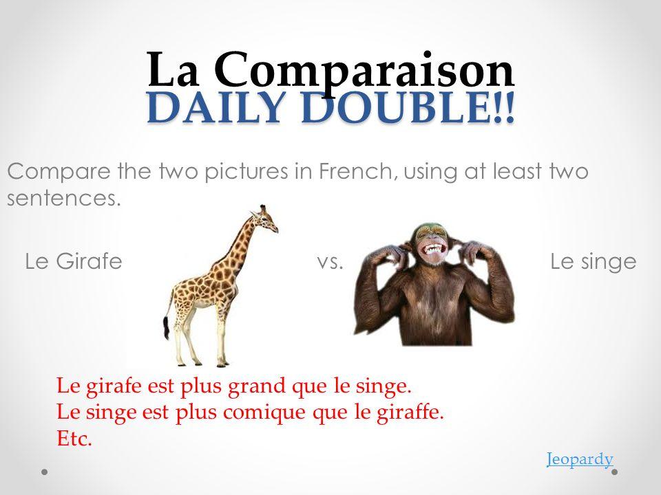 La Comparaison DAILY DOUBLE!!