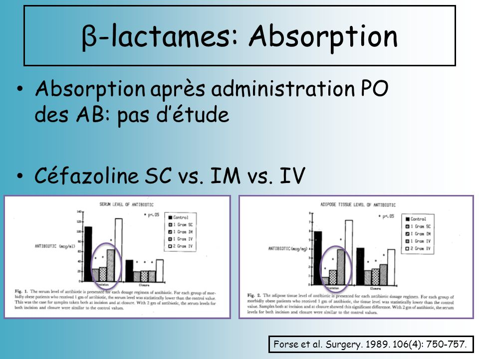 β-lactames: Absorption