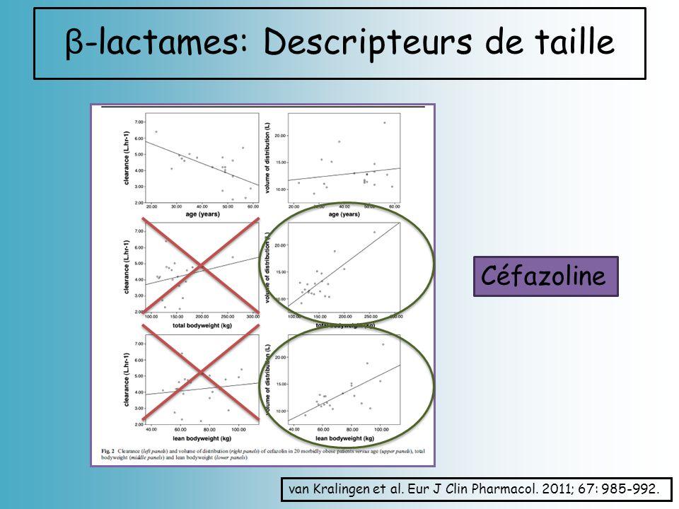 β-lactames: Descripteurs de taille