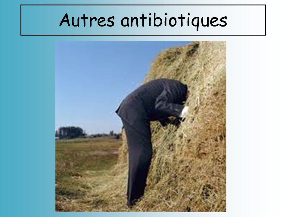 Autres antibiotiques