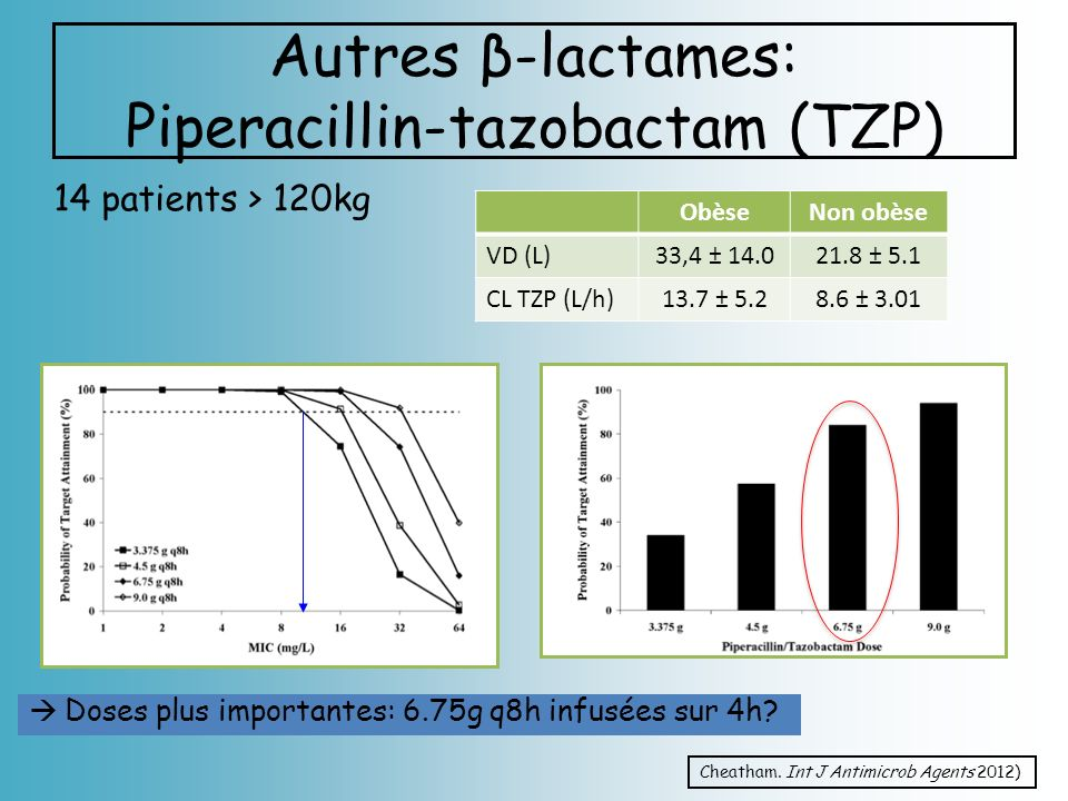 Autres β-lactames: Piperacillin-tazobactam (TZP)
