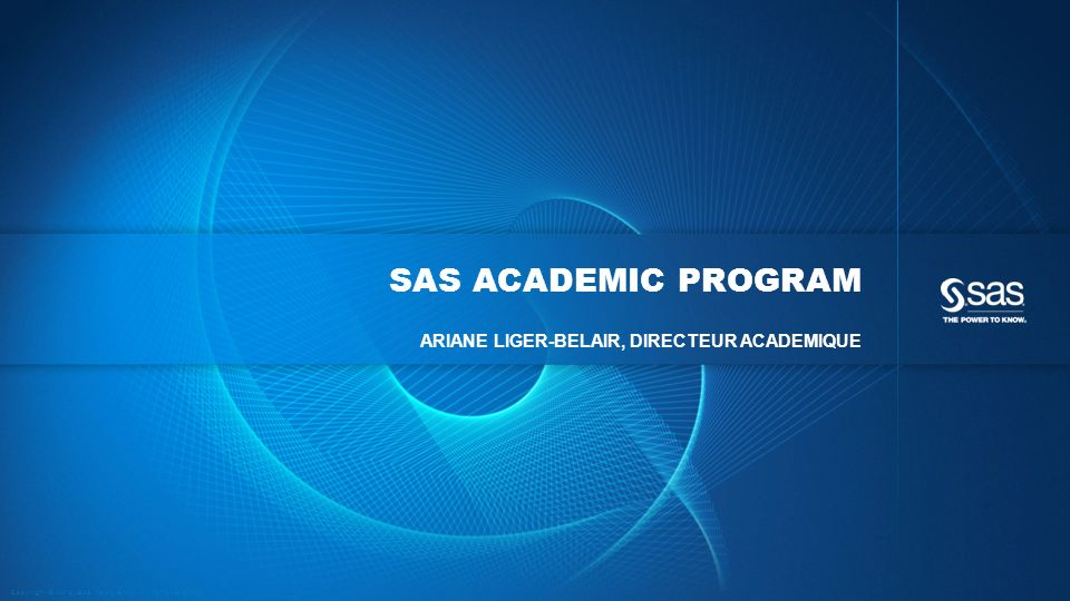 Sas ACADEMIC PROGRAM Ariane LIGER-BELAIR, directeur academique.