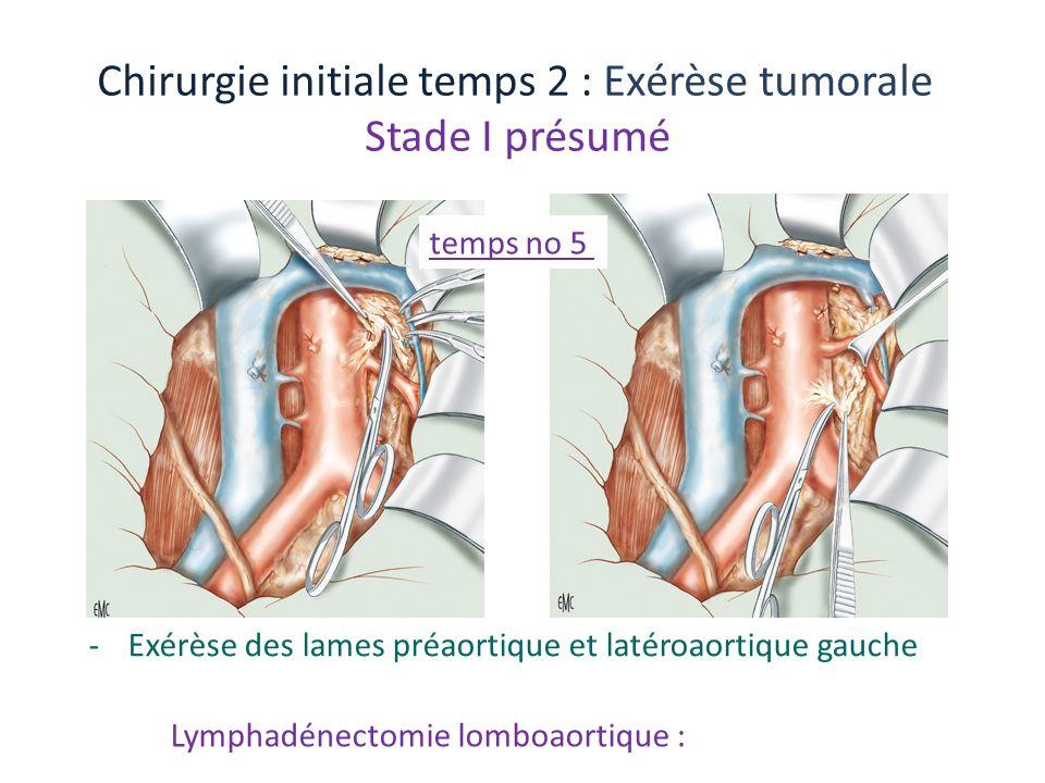 Chirurgie initiale temps 2 : Exérèse tumorale Stade I présumé