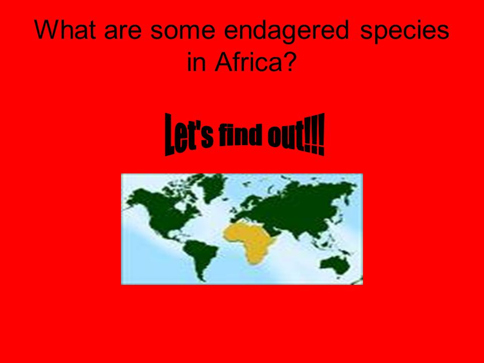 What are some endagered species in Africa