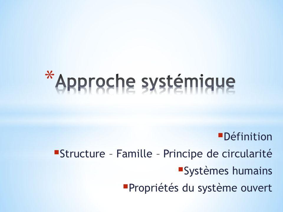 Approche systémique Définition
