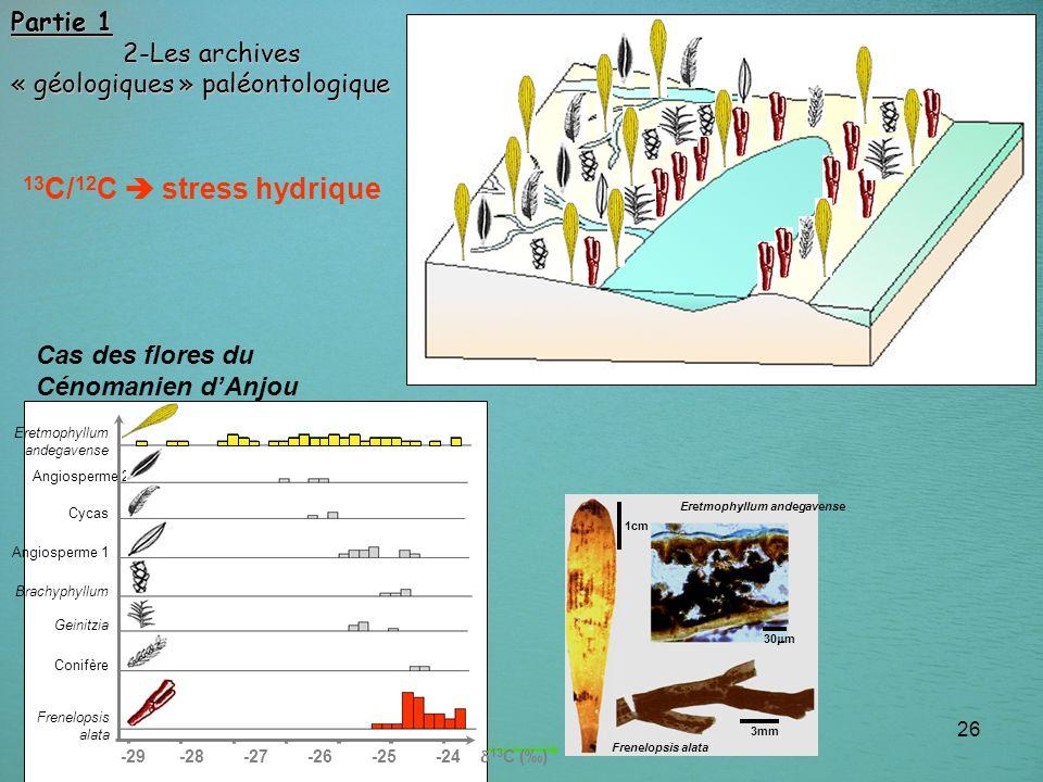 13C/12C  stress hydrique Partie 1 2-Les archives