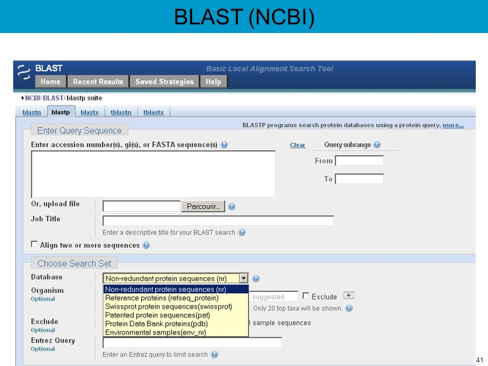 BLAST (NCBI)