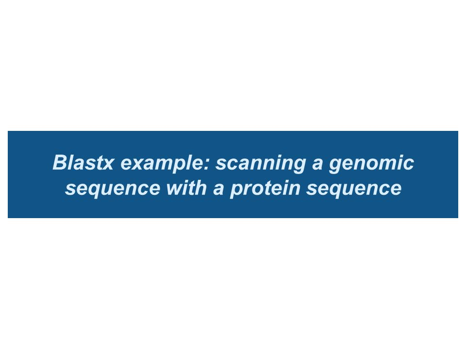 Blastx example: scanning a genomic sequence with a protein sequence