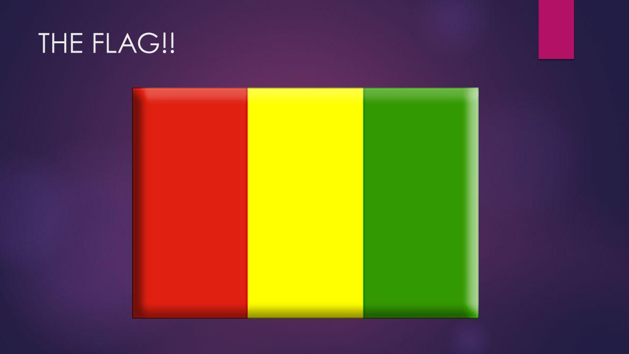 THE FLAG!!