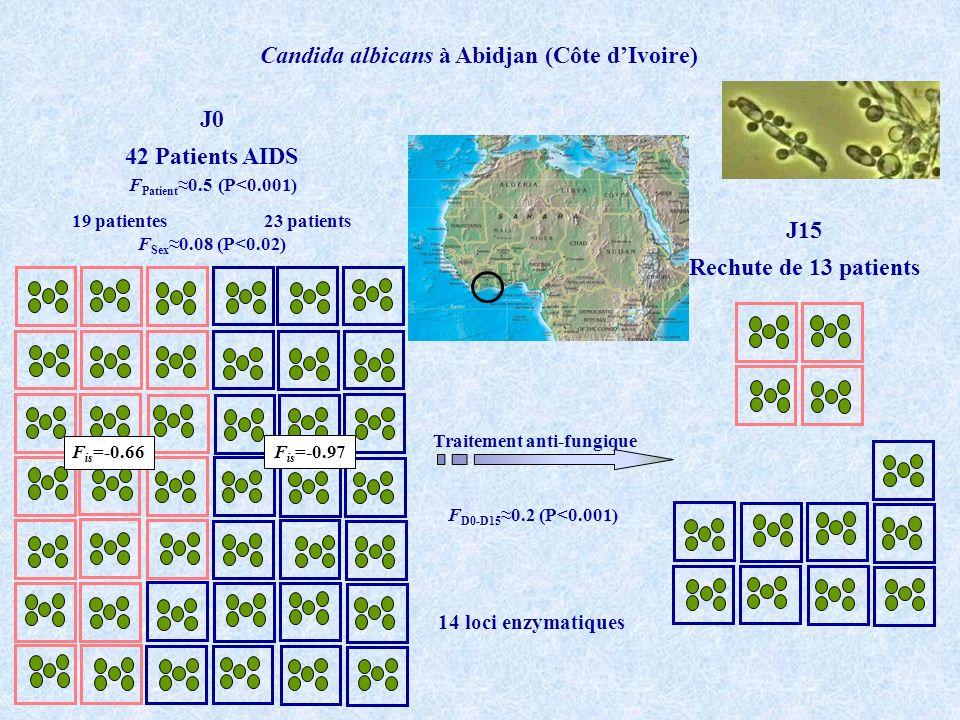 Candida albicans à Abidjan (Côte d'Ivoire) Traitement anti-fungique