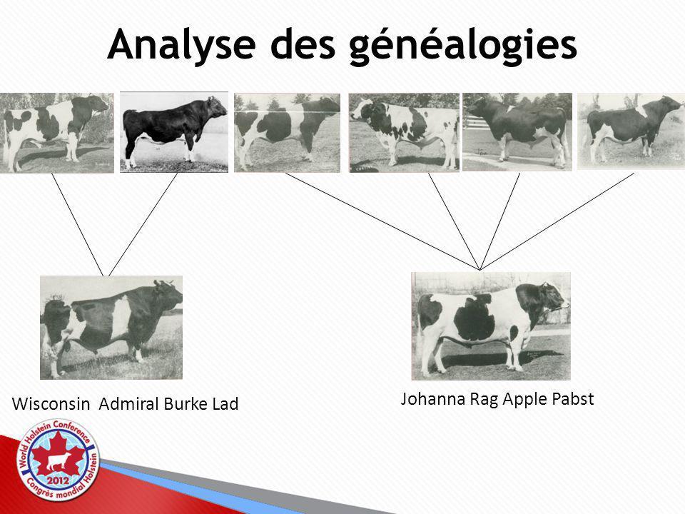 Analyse des généalogies