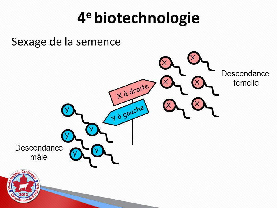 4e biotechnologie Sexage de la semence Descendance femelle Descendance