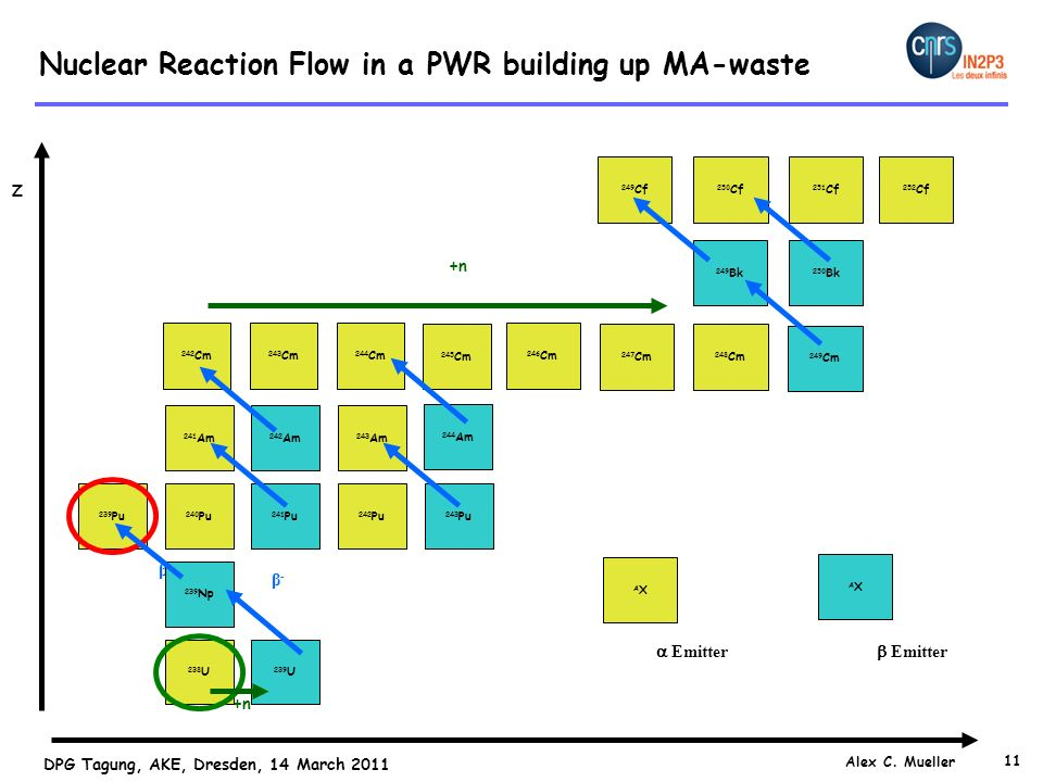 Nuclear Reaction Flow in a PWR building up MA-waste