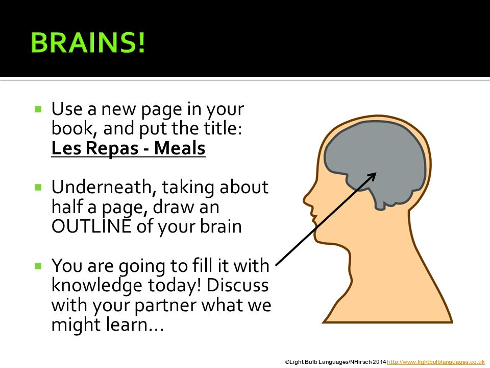 BRAINS! Use a new page in your book, and put the title: Les Repas - Meals. Underneath, taking about half a page, draw an OUTLINE of your brain.