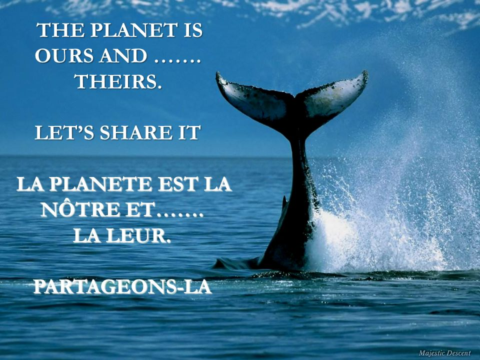 THE PLANET IS OURS AND ……. THEIRS. LET'S SHARE IT